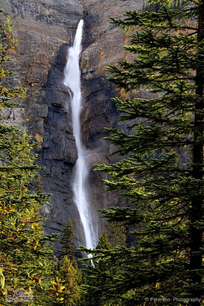 Takakkaw Falls in the fall!