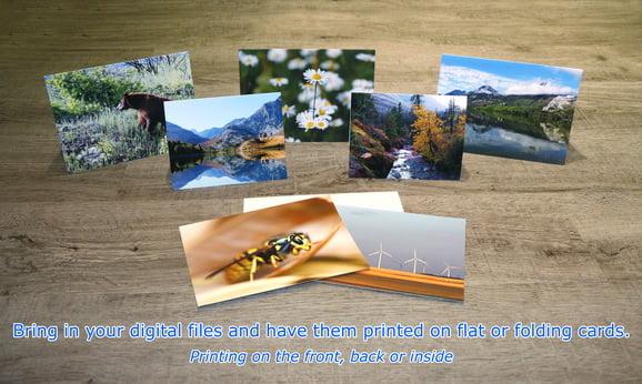 Art / Greeting & Christmas Cards cards. Christmas card photos, Holiday Cards, Photo Christmas Cards, folded cards