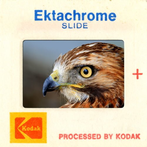 Kodak Slide