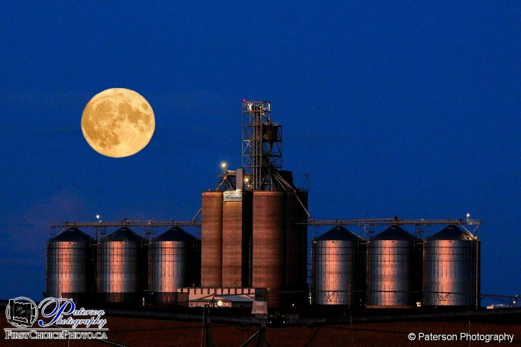 Harvest moon and elevators