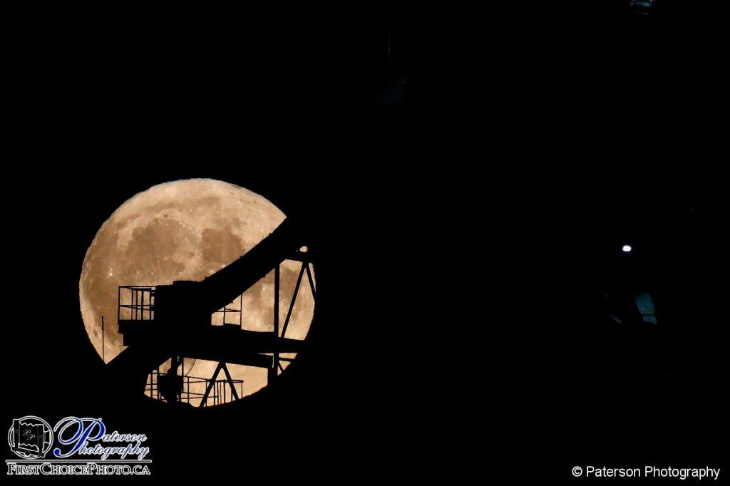 Building a harvest moon