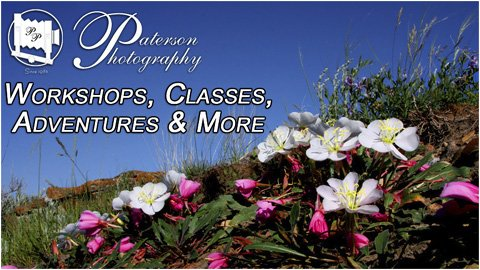 Lethbridge Photography Courses and workshops