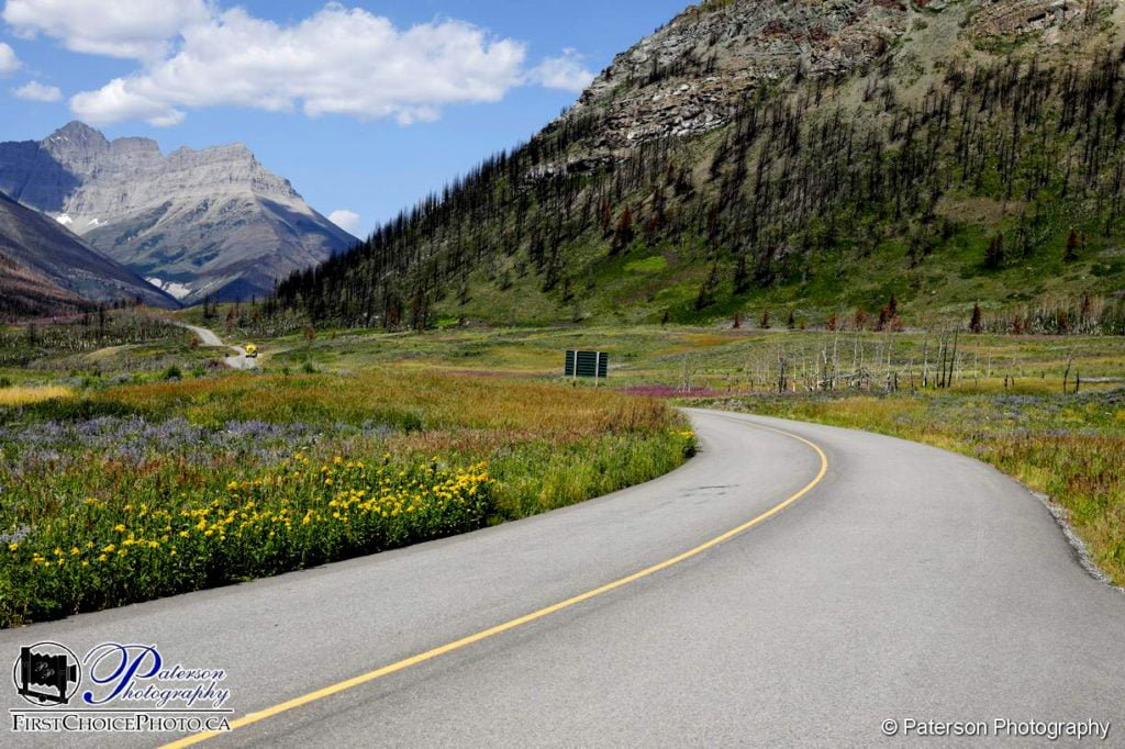 Waterton summer 2018 - The road