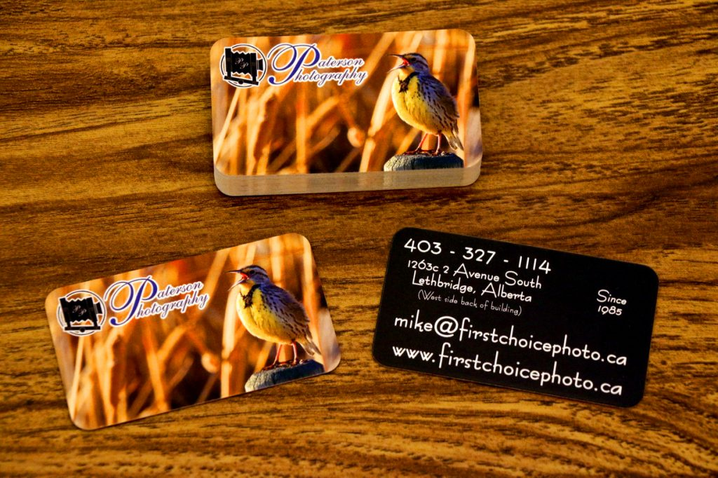 Business Card 2019 version