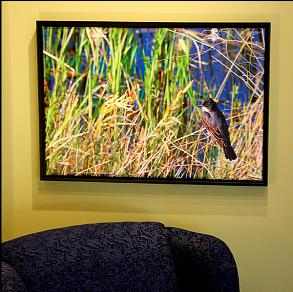Canvas printing with a wrap and a standout mount